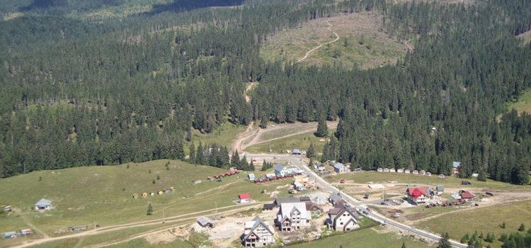 Peste 1000 de hectare de pădure au dispărut din Parcul Natural Apuseni