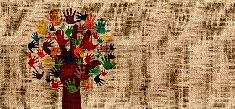 Partidele, ONG-urile și bihorenii